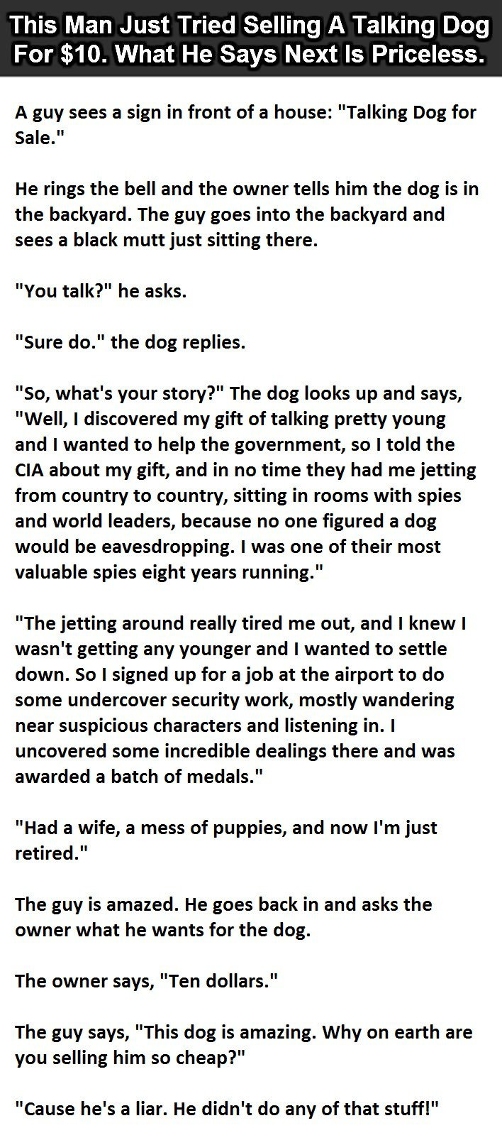 dog, sell, talking, house, sale, mutt, CIA, truth