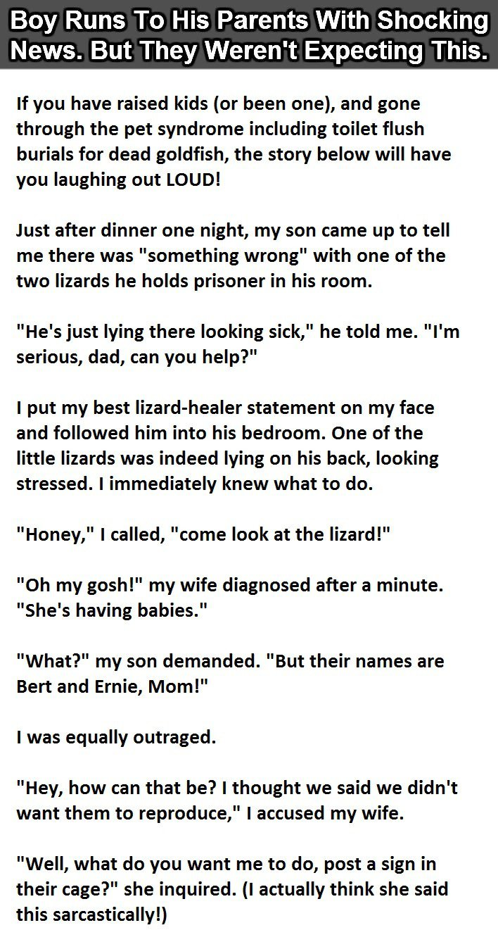 The son is worried about his pet lizard's condition and asks his parents for help. What happens next is hilarious