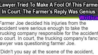 clever Lawyer Trick that backfired on him
