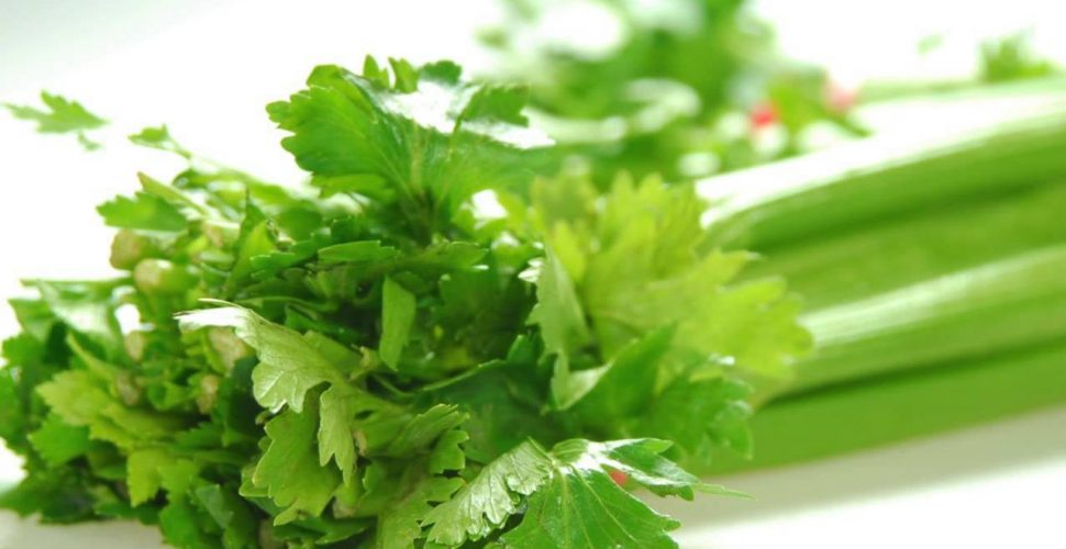 Celery benefits that you don't know about. Helpful