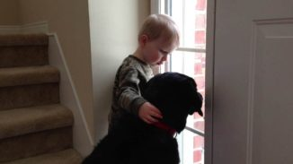 Sad dog comforted by a young man. Priceless