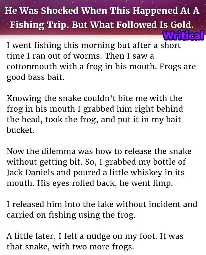 the snake and the frog short story