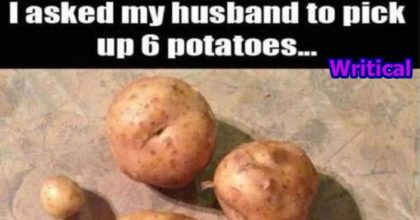 12 husbands