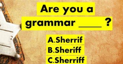 Grammar Police Test